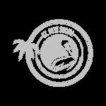 st pete social logo